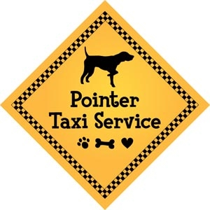 Pointer Taxi Service Magnet 9